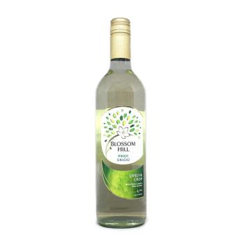 Blossom Hill Pinot / Vino Blanco California Grigio